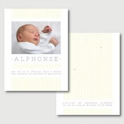 faire part Alphonse